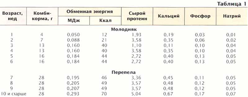 Деньги в кейсах при регистрации 10 рублей в подарок 30