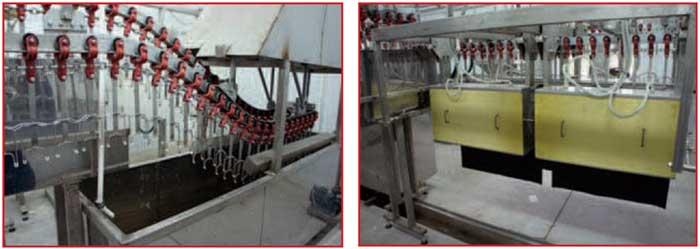 Ванна тепловой обработки Машина снятия оперения с тушек перепелов
